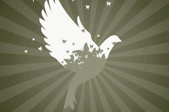dove_four_359520225